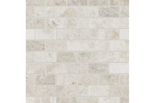 Honed Marble 25x50mm