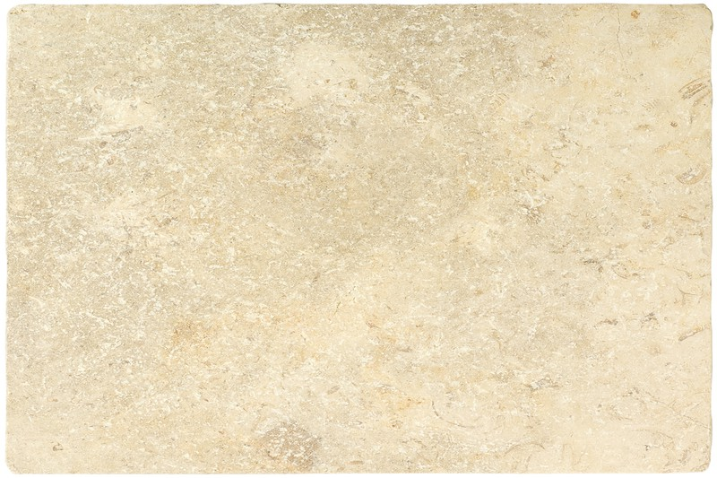 Fossil Tumbled Limestone swatch