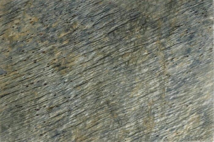 Honed green slate swatch
