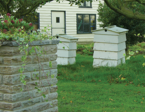 aged walling in a garden with bee hives