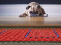 pug on underfloor heated floor
