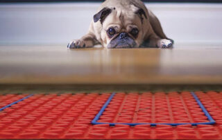 pug on underfloor heated floor